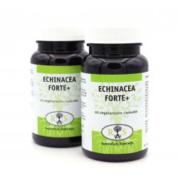 Echinacea Forte Plus 60 vcaps tweede halve prijs
