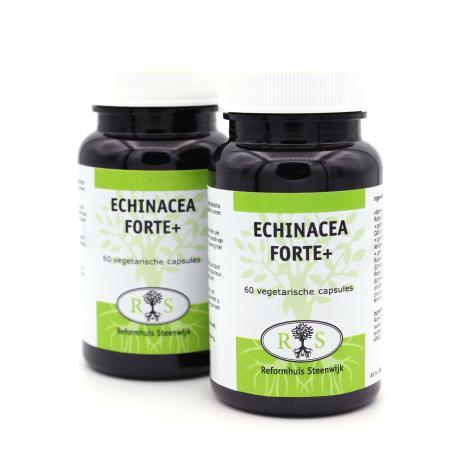 Echinacea Forte Plus 60 vcaps 1 + 1