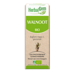Walnoot 50 ml